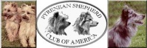 New AKC Breed for the National Dog Show 2009