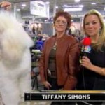 Tiffany Simons was your sideline reporter for the National Dog Show