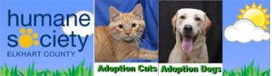 Please help these deserving pets find a home.