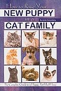 puppyincatfamily