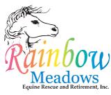 rainbowmeadowsequine