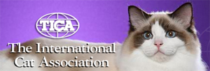 internationalcatassoc